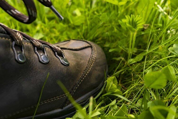 hiking shoe on a grass