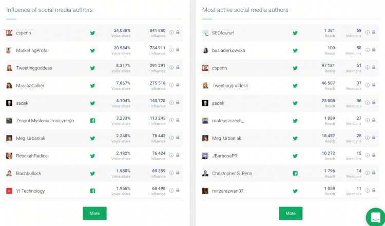 print screen of Brand24 tool showing the most popular social media authors