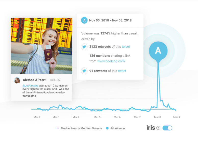 print screen from Brandwatch, a top brand monitoring tool