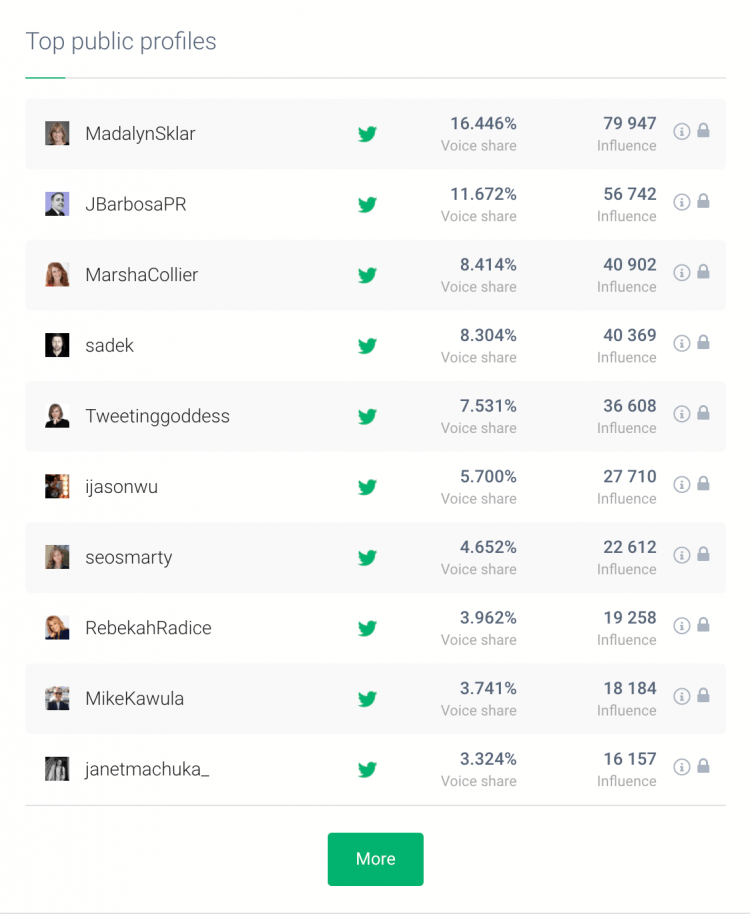 print screen showing top public profiles, influencers you can cooperate with to build social media engagement