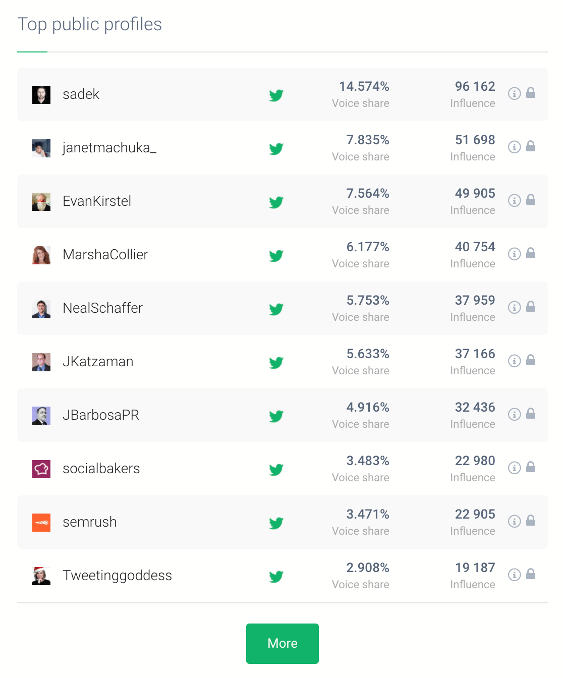print screen showing the best influencers for your brand based on the brand monitoring project