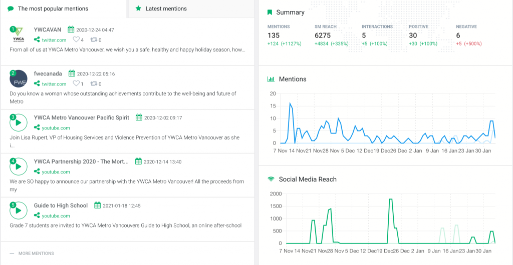 print screen showing data from media monitoring tool